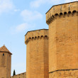 Wall of the fortress — Stock Photo #8666577