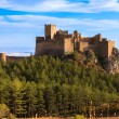 Medieval castle of Loarre, Spain - Stock Photo