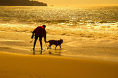 Silhouette of man with dog on beach — Stock Photo