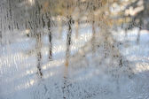 Winter view through frosted window glass. — Stock Photo