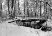 Winter landscape with small river and foot-path. — Stock Photo