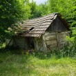 Abandoned Hut - Stock Photo