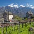 Alpine village landscape in spring — Stock Photo