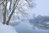 Winter river when it is snowing — Stock Photo