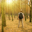 Man stands in the forest — Stock Photo