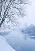 Winter river, when it is snowing — Stock Photo