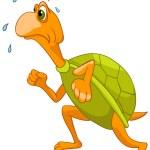 Cartoon Character Turtle — Stock Vector