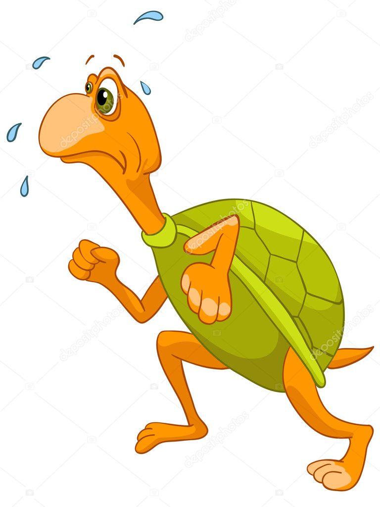 Resultado de imagem para Foto andando como tartaruga