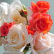 Stock Photo: Red and white roses