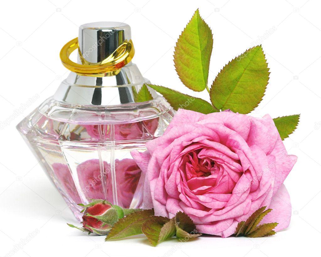 Как сделать духи из лепестков розы 6