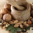 Wooden mortar and pestle with spices and nuts — Stock Photo