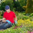 Young man - florist- working in garden — Stock Photo #10693443