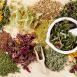Healing herbs on wooden table, herbal medicine - ストック写真