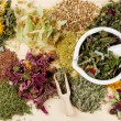 Healing herbs on wooden table, herbal medicine - Stock Photo