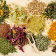 Stock Photo: Healing herbs on wooden table