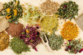 Healing herbs on wooden table — Stock Photo