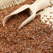Linseed, flax seeds, wooden scoop, sack — Stock Photo