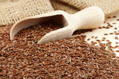 Linseed, flax seeds, wooden scoop, sack — Stockfoto