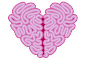 Heart brain, vector — Stock Vector