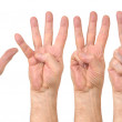 Male hands counting — Stock Photo
