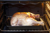 Chicken in oven — Stock Photo