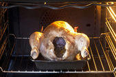 Chicken cooking in oven — Stock Photo