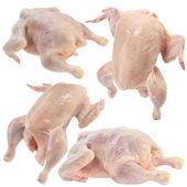 Raw chicken set — Stock Photo