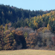Autumn landscape — Stock Photo #8363244