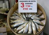 Sardines with the sales price — Stock Photo