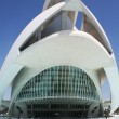 Detail modern building of the Palace of Arts in Valencia — Stock Photo