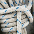 Patterned ship's rope with node — Stock Photo #9537386