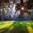 Park of castle of Chenonceau — Stock Photo