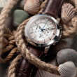 Men's classic watch — Stockfoto