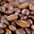 Background from coffee beans — Stockfoto