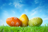 Color easter eggs in the grass against blue sky — Stock Photo