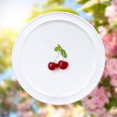 Cereja na chapa branca contra flores sakura — Foto Stock