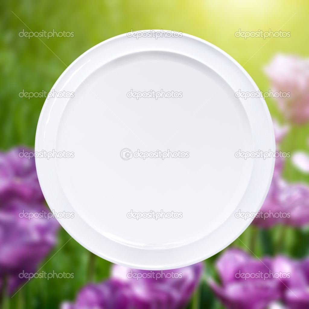 White plate against pink tulips with sun beam — Stock Photo #9752995