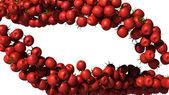 Two tasty Tomatoe Cherry streams isolated — Stock Photo