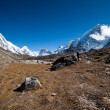 Hiking in Himalayas: Pumori summit and mountains — Stock Photo