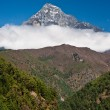 Himalaya Landscape: mountain and forest — Stock Photo