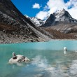 Pebble stacks and Sacred Lake near Gokyo — Stok fotoğraf
