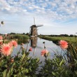 Windmill landscape in Holland — Stock Photo