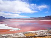 Red Lagoon, Laguna Colorada — Stock Photo