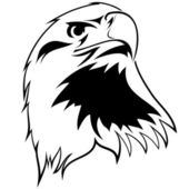 Stylized image of an eagle — Stock Vector
