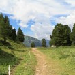 Mountain path — Stockfoto