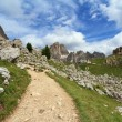 Path in Catinaccio Dolomites — Stock Photo