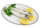 Plate with two mackerels — Stock Photo