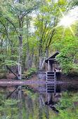 деревянный домик — Стоковое фото