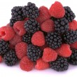 Raspberries and blackberries — Stock Photo