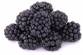 The blackberry — Stock Photo